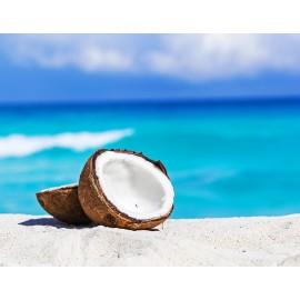 Женская туалетная вода Кокос Coconut Кокосовый Орех